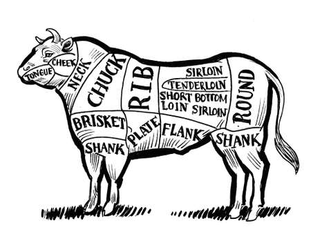Beef chart for butchers. Ink black and white drawing 版權商用圖片