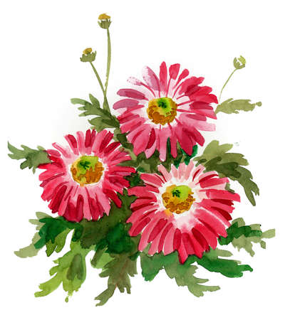 Pink flowers with green leaves on white background. Watercolor painting 스톡 콘텐츠
