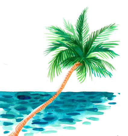 Tropical palm tree near the sea. Ink and watercolor drawing 스톡 콘텐츠