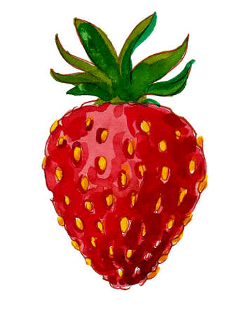 Ripe strawberry fruit. Watercolor painting Reklamní fotografie