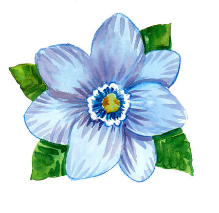 Beautiful blue flower with green leaves. Watercolor painting