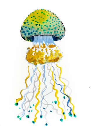 Jellyfish animal. Ink and watercolor drawing