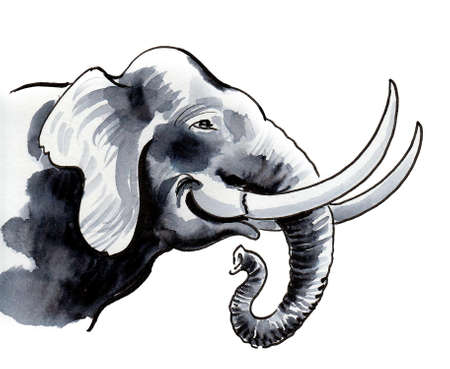 Smiling African elephant. Ink and watercolor drawing
