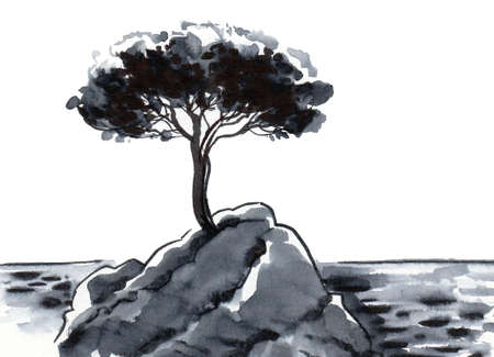 Pine tree on a rock near the sea. Ink and watercolor drawing