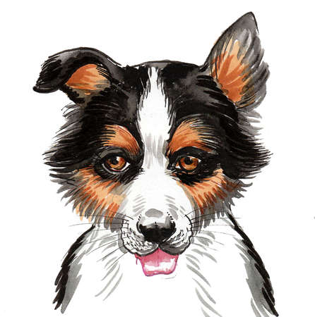 Cute puppy dog head on white background. Ink and watercolor drawing