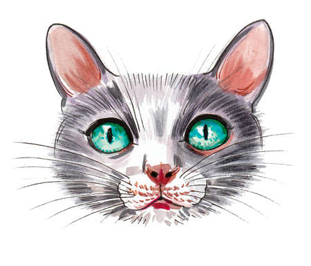 Cute cat with green eyes. In and watercolor drawing Stockfoto