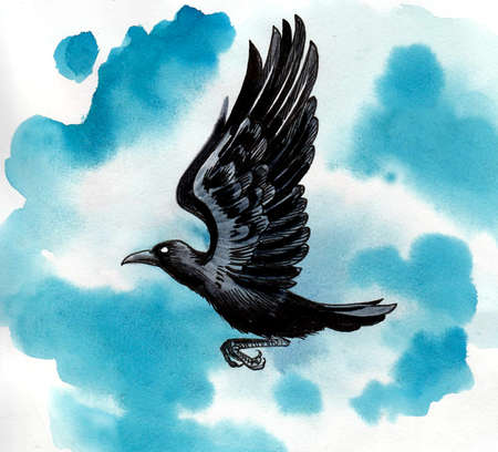 Flying crow bird. Ink and watercolor drawing Stockfoto