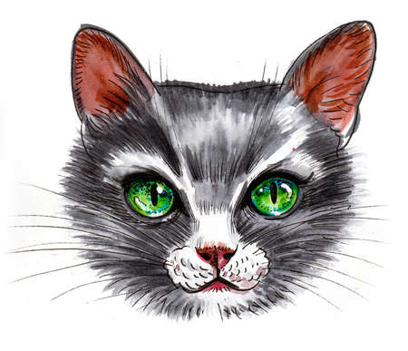 Cat with green eyes. Ink and watercolor drawing Stockfoto