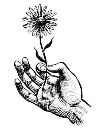 Hand holding a flower. Ink black and white drawing Stockfoto