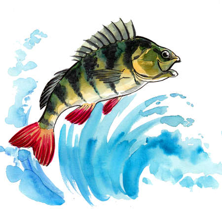 Jumping fish in blue water. Ink and watercolor drawing