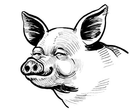 Happy smiling piglet. Ink black and white drawing