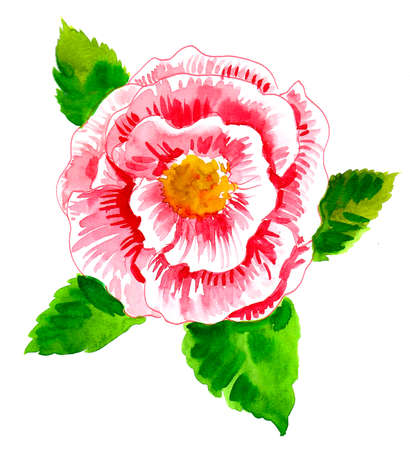 Pink flower with green leaves. Watercolor painting