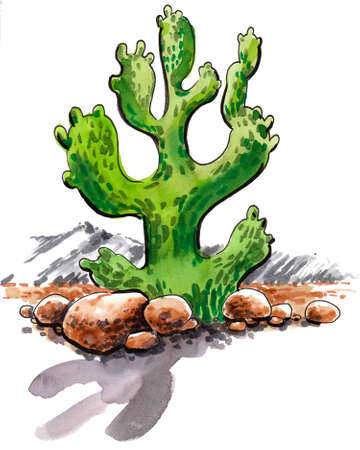 Cactus in Mexican desert. Ink and watercolor drawing Foto de archivo