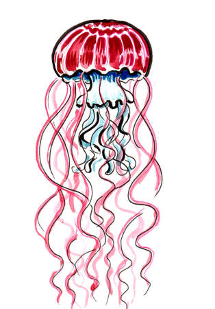 Poisonous jellyfish animal. Ink and watercolor drawing Banque d'images