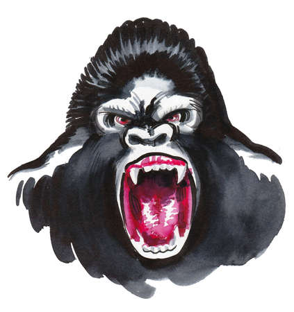 Angry looking gorilla. Ink and watercolor drawing Banque d'images