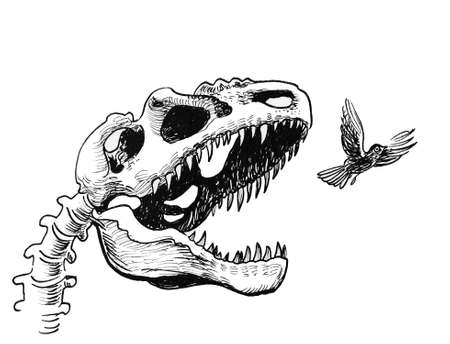 Tyrannosaurus Rex hunting a small bird. Ink black and white drawing