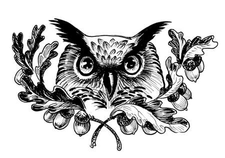 Owl bird head and oak tree. Ink black and white drawing