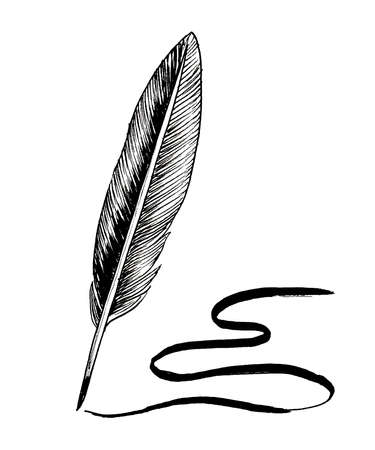 Feather quill pen. Ink black and white drawing
