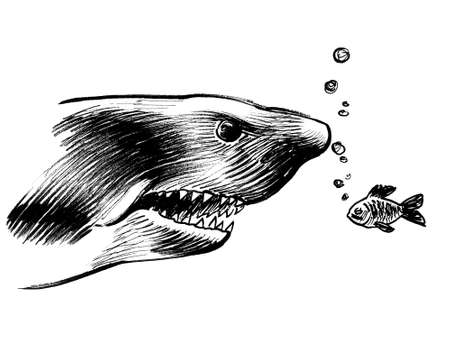 Big angry shark and small brave fish. Ink black and white drawing
