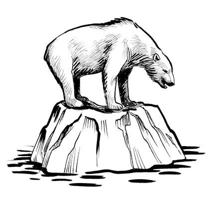 Polar bear on the big piece of ice. ink black and white drawing