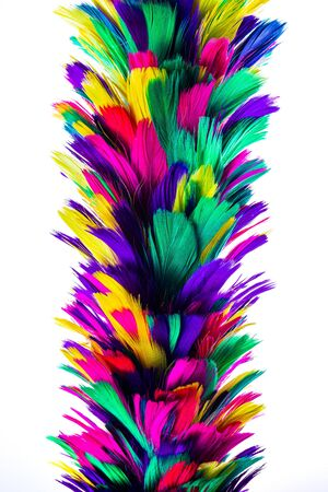 Closeup of colorful feather duster with isolated on white background 版權商用圖片