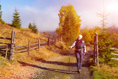 walking pole: Female Hiker with Backpack and Trekking Pole Walking on Pathway in Autumnal Forest European Rural Landscape Outdoor Sunny Day