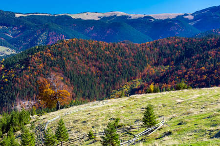 three layer: Three Layer Autumnal Mountain Perspective with Grassy Meadow Colorful Forest and High Hills and Blue Sky Stock Photo