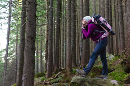 trekking pole: Female Hiker Staying inside Deep Old Forest on Moss Stone with Backpack and Trekking Pole Looking into Distance with Pensive Face Stock Photo