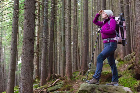 Female Hiker Staying inside Deep Old Forest on Moss Stone with Backpack and Trekking Pole Looking into Distance