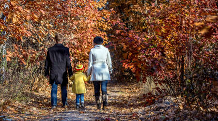 two generation family: Two Generation Family Walking in Autumnal Forest Alley Father Mother Holding Hands of Little Baby Girl Bright Yellow Clothing Coat and Cap Back View