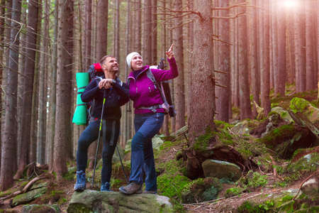 staying: Man and Woman Hikers Staying on Stone in Dense Old Forest Smiling and Pointing with Backpacks and Trekking Poles Sunbeams Shining throw Trees Stock Photo