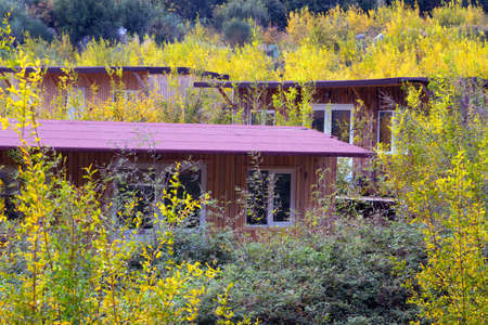 architecture bungalow: Several Wooden Bungalows of rural Resort in Autumnal Forest