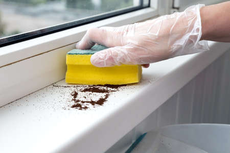 Office Cleaning Concept human Hand cleaning Window sill