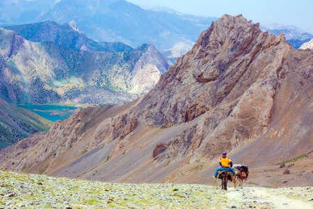 Majestic Mountain Landscape and cargo Donkey Caravan