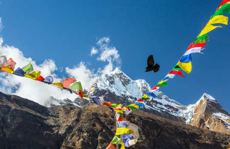 Bird flying in Sky between Nepalese prayer Flags in Himalaya