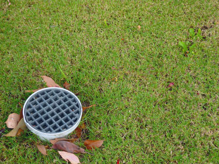 drain in the lawn 스톡 콘텐츠
