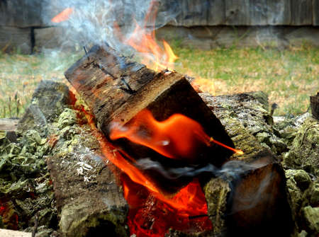 a solid piece of wood burning on an bonefire outdoors during the day, with vivid real colours.
