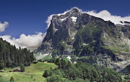 Alpine mountain landscape at Grindelwald (Switzerland)
