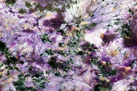 fibrous: Siberian mineral named charoite texture surface background