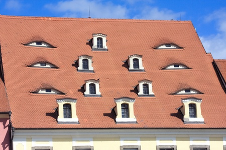 Old tile roof at Cheb  Czech Republic  with windows look as eyes