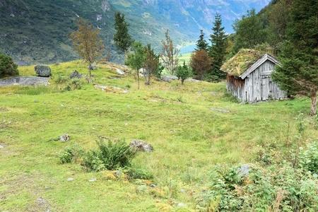 jostedal: Norwegian forest landscape near glacier Briksdal