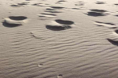 Surface of the sand dune in sunset light, Lielupe - Latvia