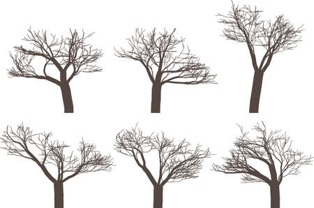 depressive: Vector illustration pack with six trees silhouettes without leafs