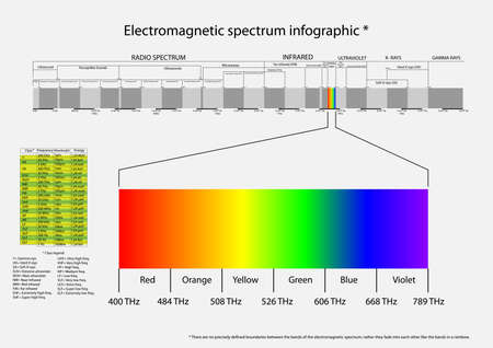 Vector infographic illustration of electromagnetic spectrum from infra sounds to gamma ra