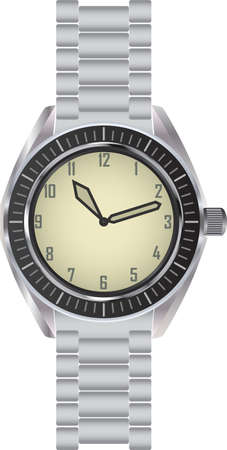 personal accessories: Classic metallic wrist watch