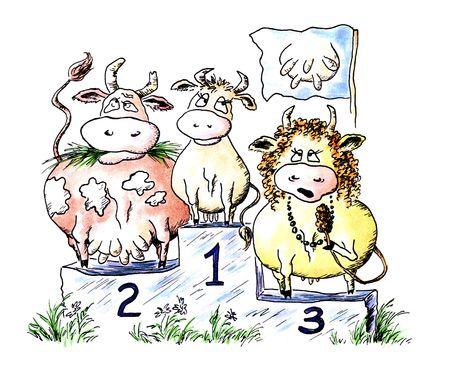 vacas lecheras: Color de agua c�mico de dibujo: concurso de belleza entre las vacas