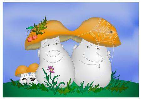 Family of mushrooms on walk photo