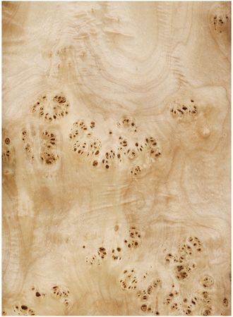 marquetry: Veneer sheet of a root of a poplar Stock Photo