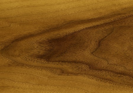 Decorative finishing material: Natural veneer of an teak tree photo