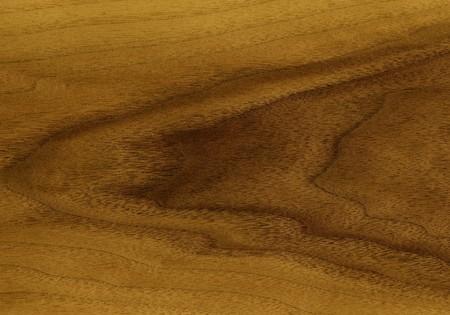 Decorative finishing material: Natural veneer of an teak tree Stock Photo - 6984504